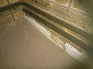 Significant termite mudding